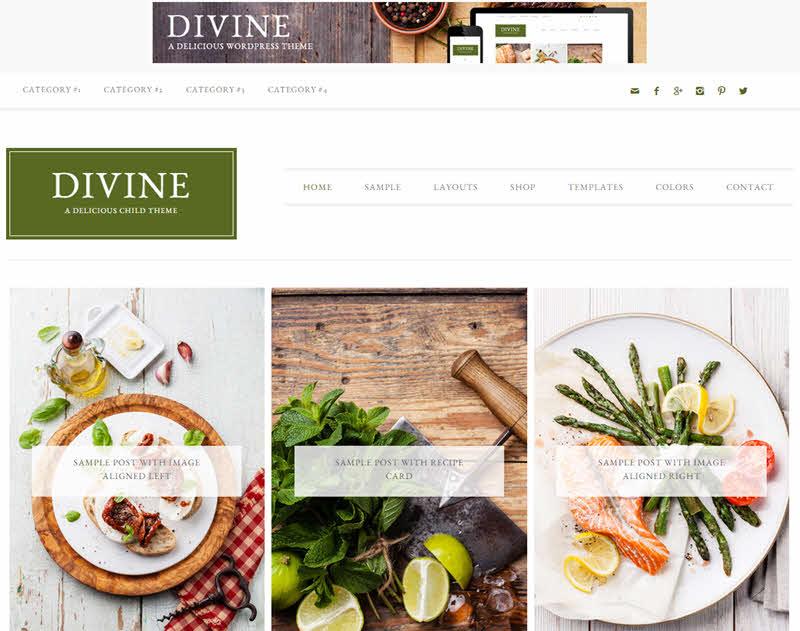 WPTheme_Devine