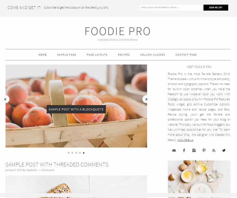 WPTheme_FoodiPro